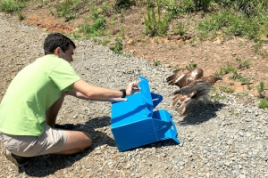 Image of Quinton releasing a bird into the wild